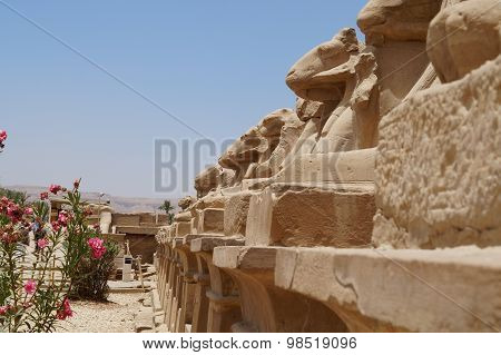 Avenue of sphinxes in Karnak Temple