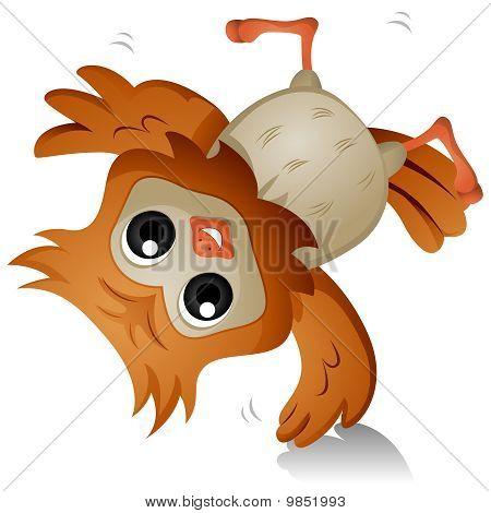 Owl Cartwheel