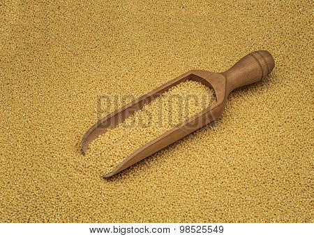 white millet in a wooden scoop
