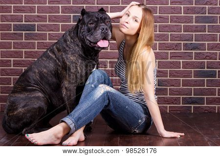 Girl Sitting Near The Wall And Hugging A Big Dog Cane Corso