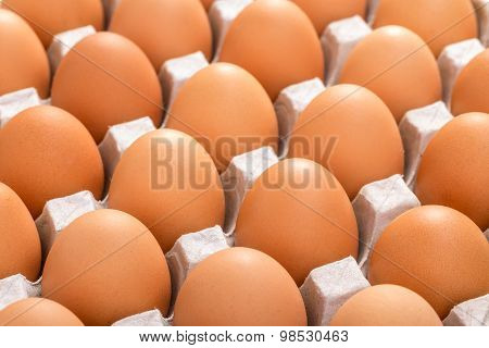 Cardboard Tray Filled With Brown Eggs