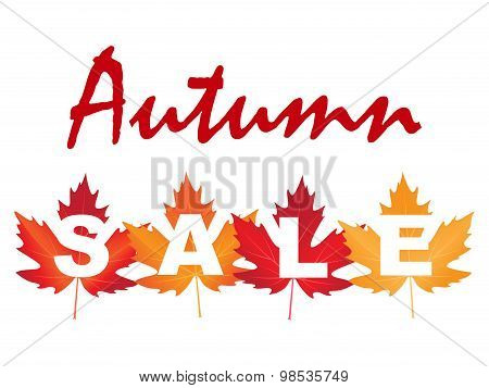 vector illustration of autumn sale with maple leaves