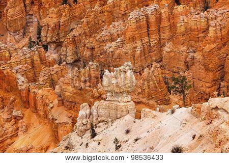 White Orange Hoodoos Bryce Point Bryce Canyon National Park Utah