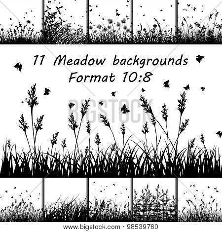 Set Of Meadow Backgrounds