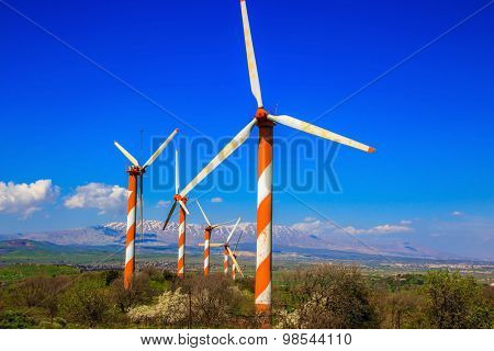 Israel. Flowering Golan Heights on a sunny day. Several huge modern windmills. Seen in the distance the snow-covered Hermon