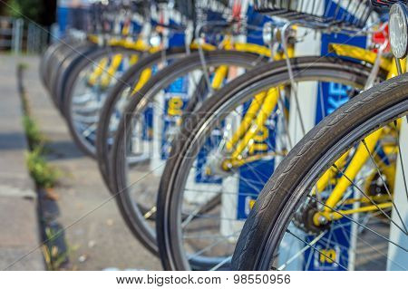 Bicycle Tires, Parked City Sharing Bicycles