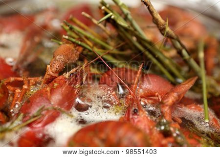 Boiled Crayfish In The Pan
