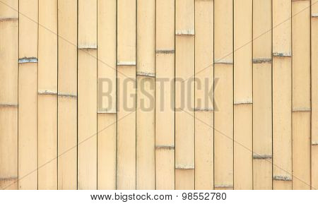 pattern of bamboo background in columns