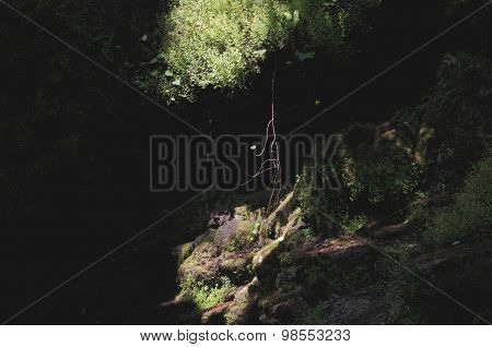 Falls over mossy rocks