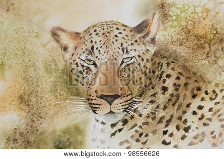 Portrait of a leopard.