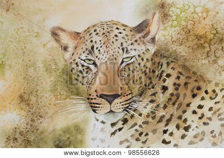 Portrait of a leopard.