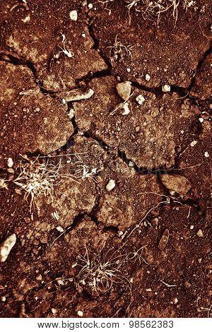 Texture Of Cracked Sunburned Soil