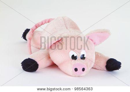 Plushed Toy Pig