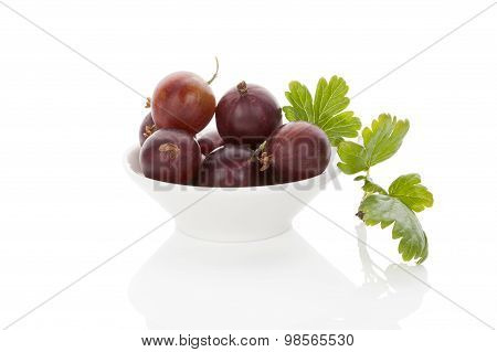 Red Gooseberries.