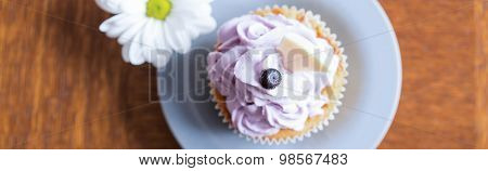 Dainty Blueberry And Chocolate Cupcake
