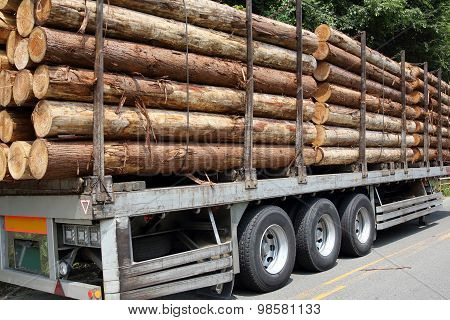 Timber trailer and logs