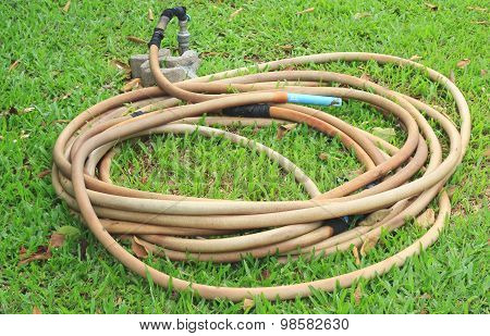 Reel Of Hose Pipe And Spraying Head On Grass