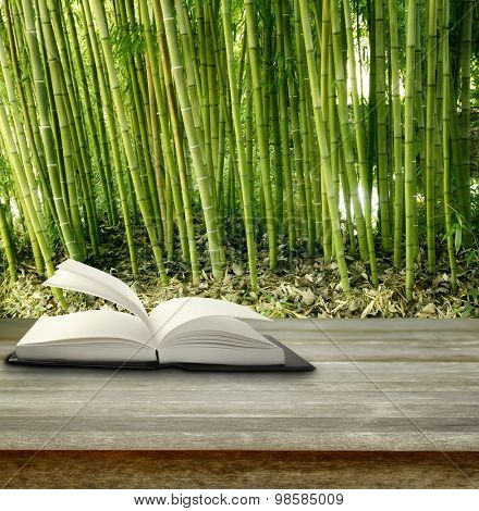 Open book on table in front of bamboo forest