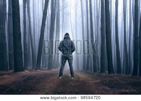 Man stares into the fog in a blackened forest