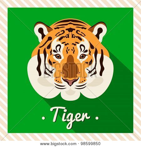 Vector portrait of a  tiger. Symmetrical portraits of animals. Vector Illustration, greeting card