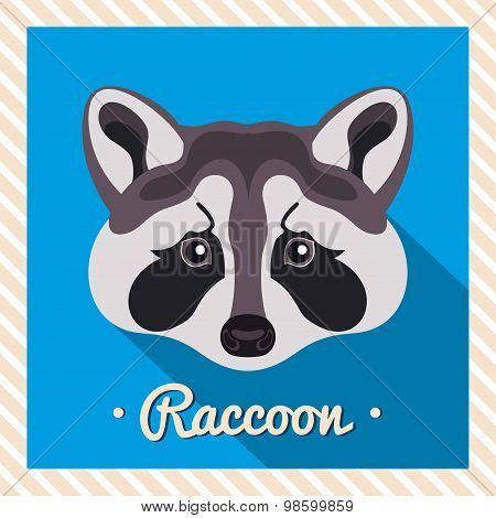 Vector portrait of a  grey raccoon. Symmetrical portraits of animals. Vector Illustration.