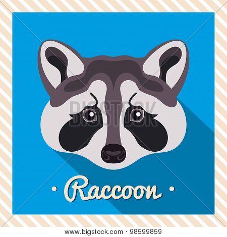 Vector portrait of a  grey raccoon. Symmetrical portraits of animals. Vector Illustration.