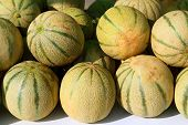 pic of muskmelon  - Cantaloupe rock melon muskmelon spanspek stacked on market - JPG