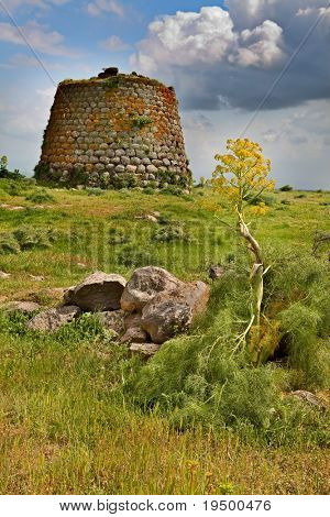 Nuraghe tower ruins and giant flower Sardinia Sardegna Italy archaeological remnants of prehistoric building of bronze age ancient civilization tourism