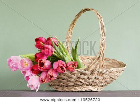 tulips - red & pink - in a straw basket - green background