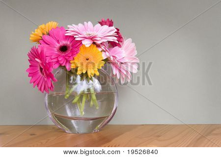 gerber daisies in a glass vase - room for copy