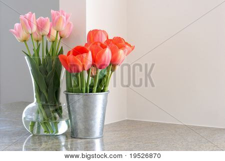 vases of tulips sit on granite countertop
