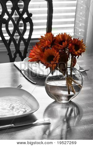 table setting for two with flowers near a window - play of light & reflection