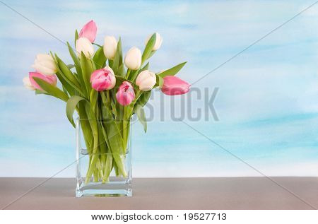 tulips on painted pastel blue watercolor background for spring