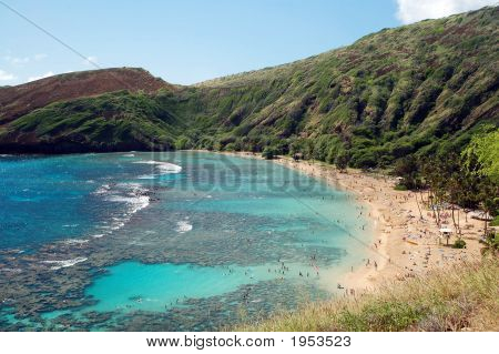 Hanauma Bay Reef Honolulu Hawaii