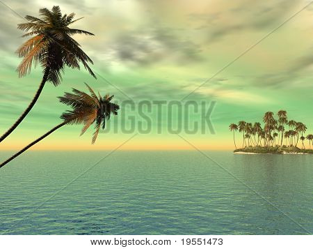 Coconut palm trees on a small island - digital artwork