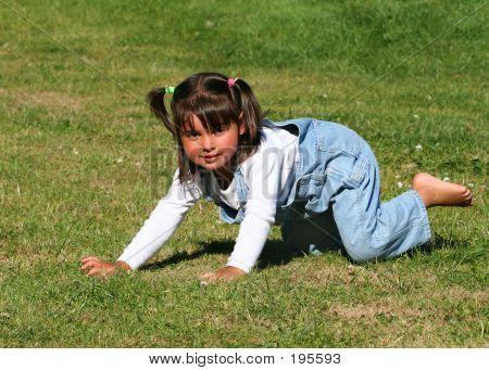 Fun On The Grass