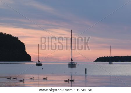 Sailboats At Sunset 1