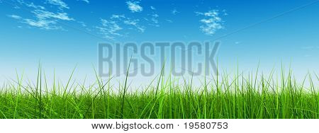 high resolution 3d green grass over a blue sky banner with white clouds as background and a clear horizon. Ideal for nature,green or sport designs.