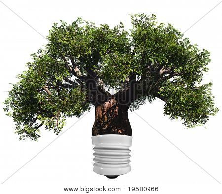 baobab tree isolated on white background as a lamp ,ideal for nature, season or conceptual designs. It is a conceptual image for sustainable, ecological and energy designs.
