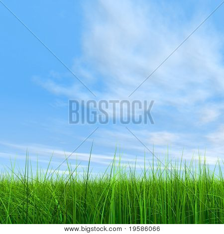 3d green grass over a blue sky with white clouds as background and a clear horizon