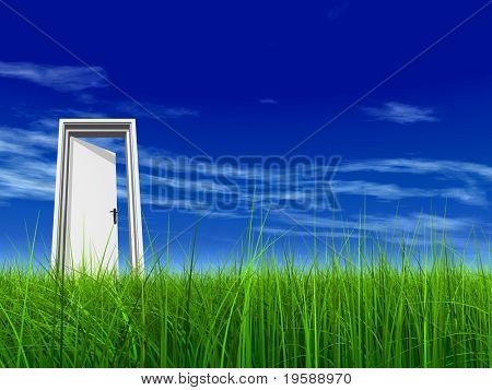 High resolution green grass with a conceptual opened door over a blue sky background