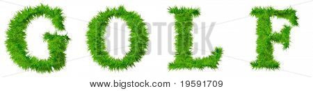 High resolution grass text isolated on white background