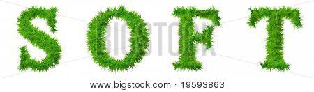 High resolution conceptual grass text isolated on white background