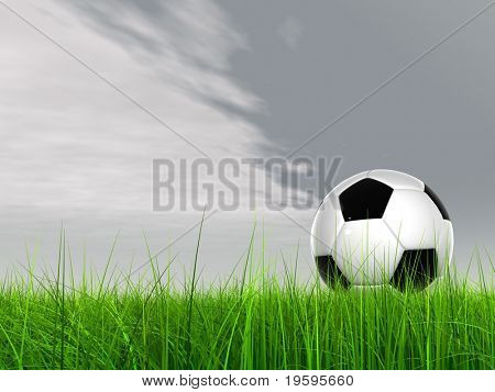 High resolution 3D soccer ball in green grass over a blue sky