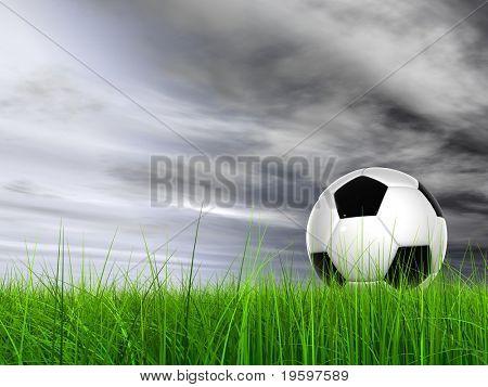 High resolution 3D soccer ball in green grass over a gray sky