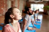 fitness, yoga and healthy lifestyle concept - woman with group of people doing cobra pose on mats at poster