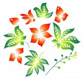 picture of chloroplast  - Set of the floral elements on a white background - JPG