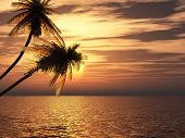 stock photo of tropical island  - Sunset coconut palm trees on small island  - JPG