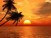 stock photo of tropical island  - Sunset coconut palms tree on a ocean coast - JPG