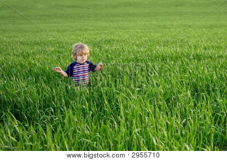 One Small Child In An Ocean Of Grass